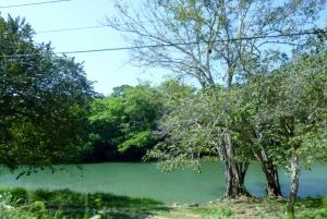 Belize river by roadside