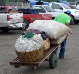 Vender hauling goods