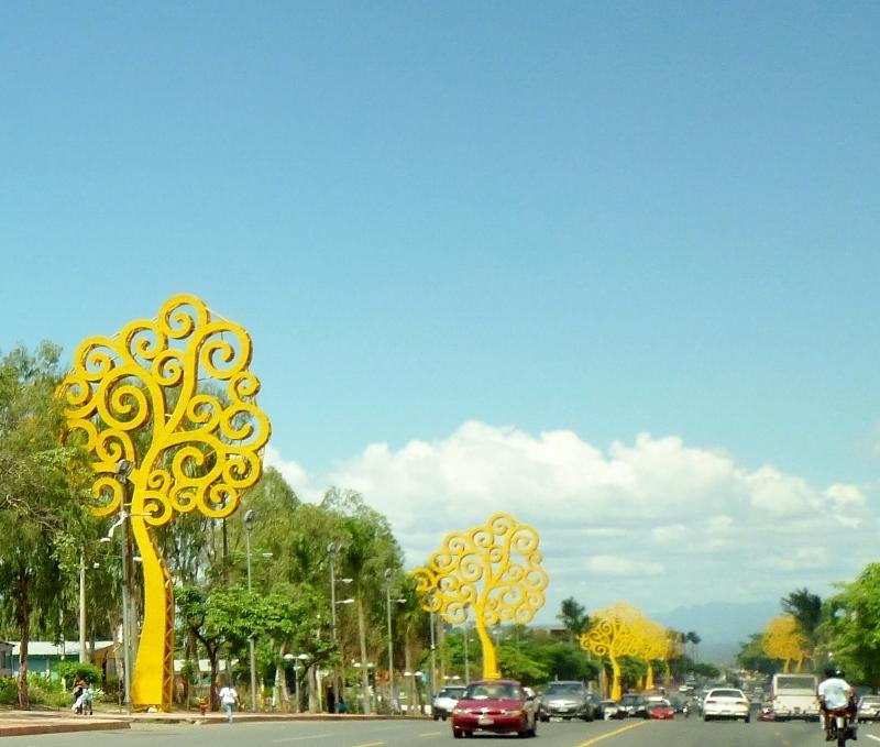 Trees line a Managua avenue