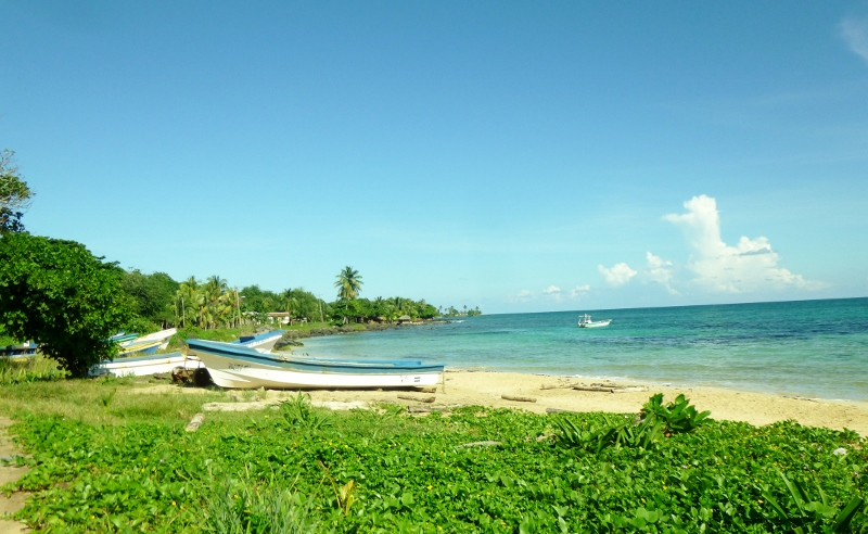 the beach and pangas