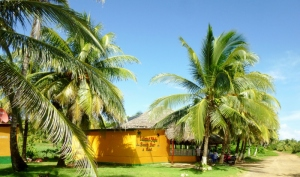 The Island Style Beach Bar and Reastaurant