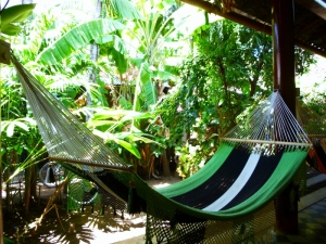 A hammock to lounge by the garden