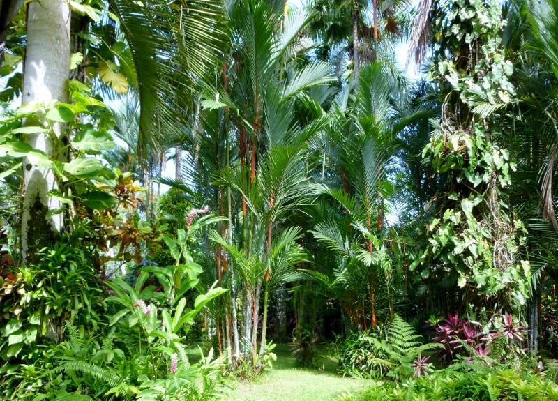 El Jardin Glorioso