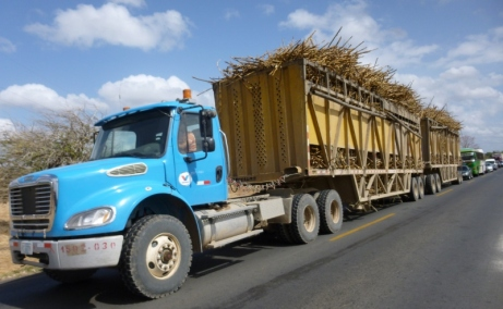 A load of sugarcane - near Rivas