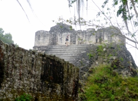 In the Gran Plaza - Tikal Mayan ruins