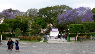 La Plaza Mayor- the Central Park - Antigua