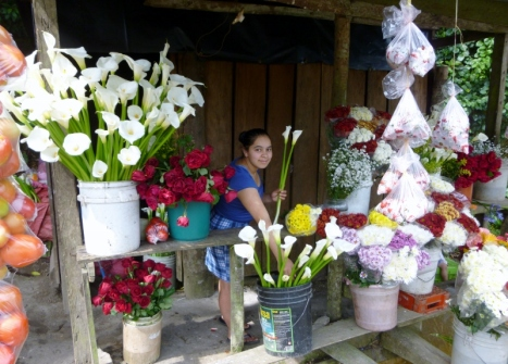Smiling woman at roadside flower stand - road to Jinotega,Nicaragua