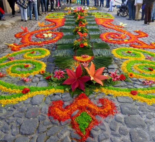 Good Friday - Alfombra made from sawdust and flowers