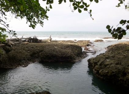 Coral pool - El Jardin Glorioso - Cahuita