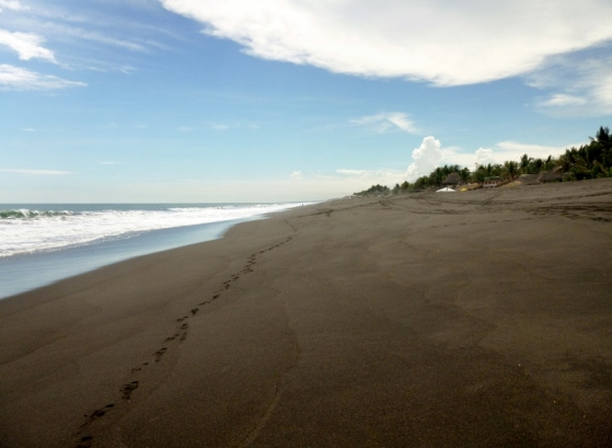 Black sand beach - Monterico