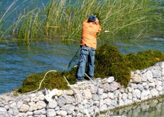 Cleaning sea grass from Lake Atitlan in front of the Hotel