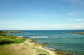 Cove on Utila