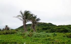 Pumpkin Hill - The highest point on Utila