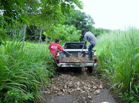 Road maintenance in the bush - Utila,Honduras