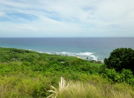 A view from Pumpkin Hill - Utila