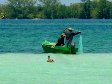 Locals with net and pelican in foreground - Utila,Honduras