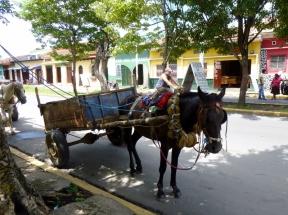 Horse and wagon - Leon