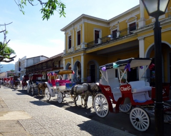 Horse cabs in a row - Granada