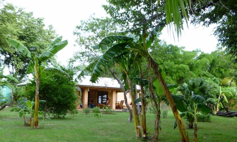 Tineke s house