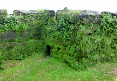 Overgrowth in tropical Panama climate - San Lorenzo ruins