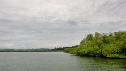 Mangroves and Islets- Bocas del Toro archipeligo