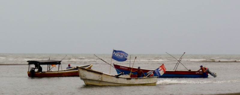Guarare boats