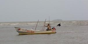 catching a living - Guarare, Panama