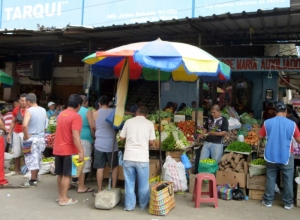 Tarqui Market