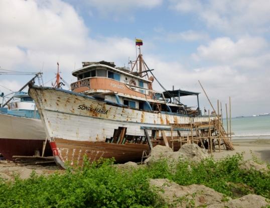 rehabbing wooden beauty at Manta Beach