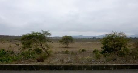 coastal desert south of Manta