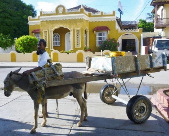donkey and cart, Avenida Santander, Cartagena