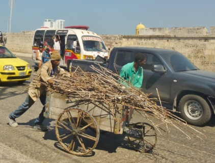 hauling wood through the streets of Cartagena, Colombia