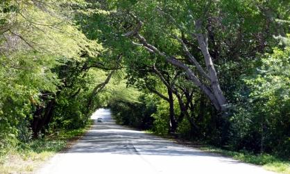 driving towards Westpunt