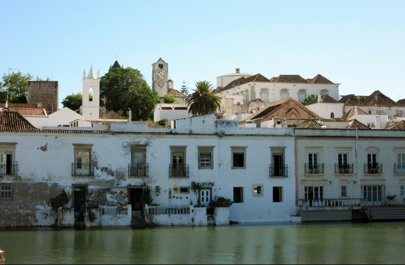 houses along river