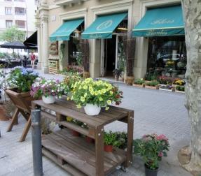 flower shop in Barcelona, Spain