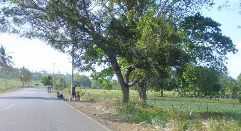 Boca de Yuma - the drive Dominican Republican-