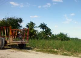 Boca de Yuma - the drive Dominican Republican -