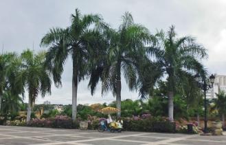 Santo Domingo - street scene - Dominican Republican