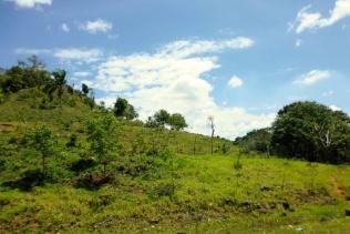 trip to Cabarete Dominican Republican -