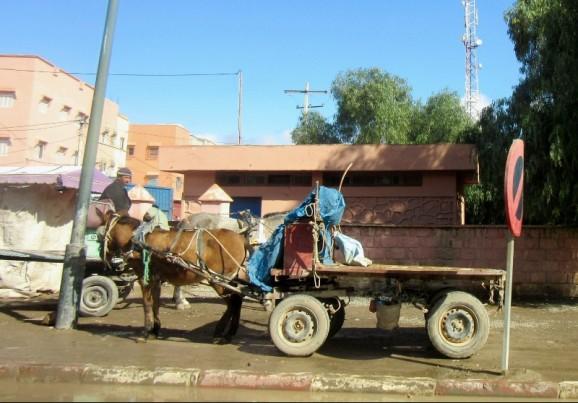 On the road to Essaouira, Morocco