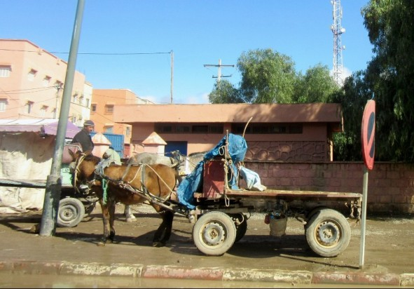 On the road to Essaouira, Morocco
