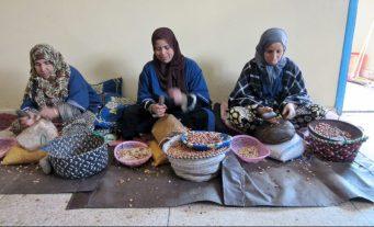 Cracking argan nuts to make Argan oil - The Women's Cooperative near Essaouira, Morocco