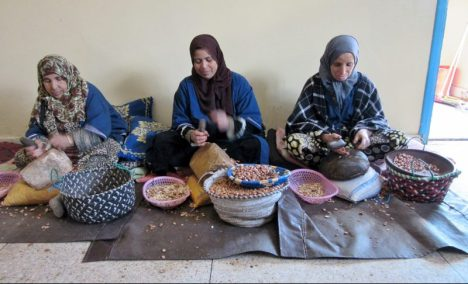 Cracking argan nuts to make Argan oil - The Women's Cooperative near Essaouira, Morocco