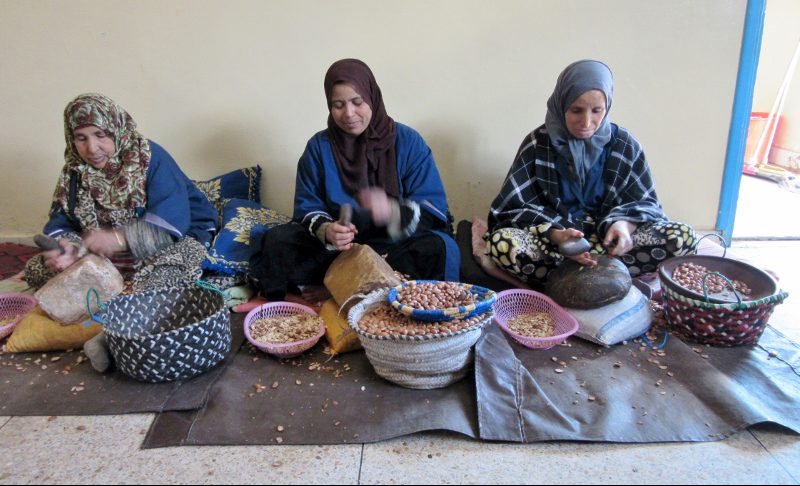 nuts to make Argan oil - The Women's Cooperative