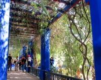 Jardin Majorelle, Marrakesh, Morocco.