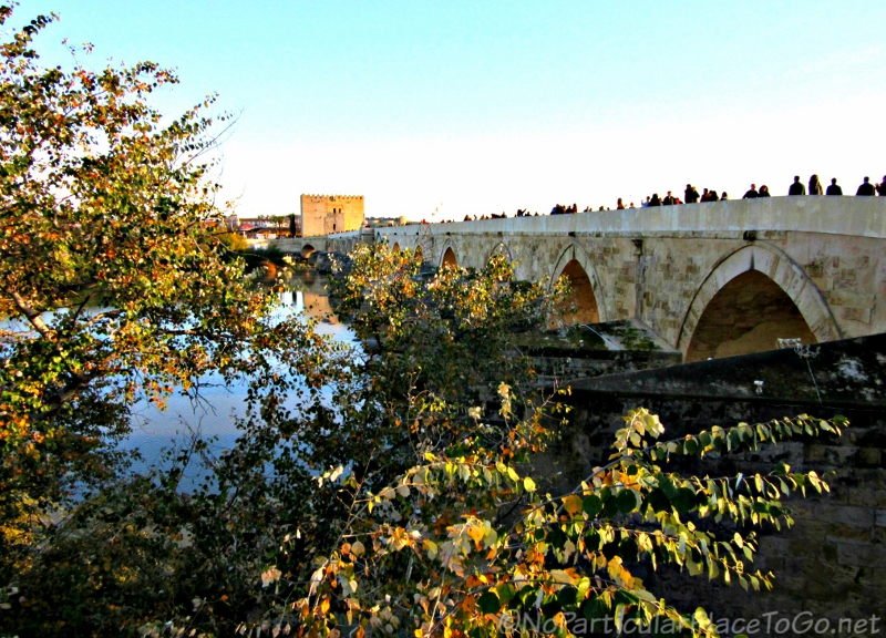Roman Bridge - Cordoba, Spain photo by No Particular Place To Go